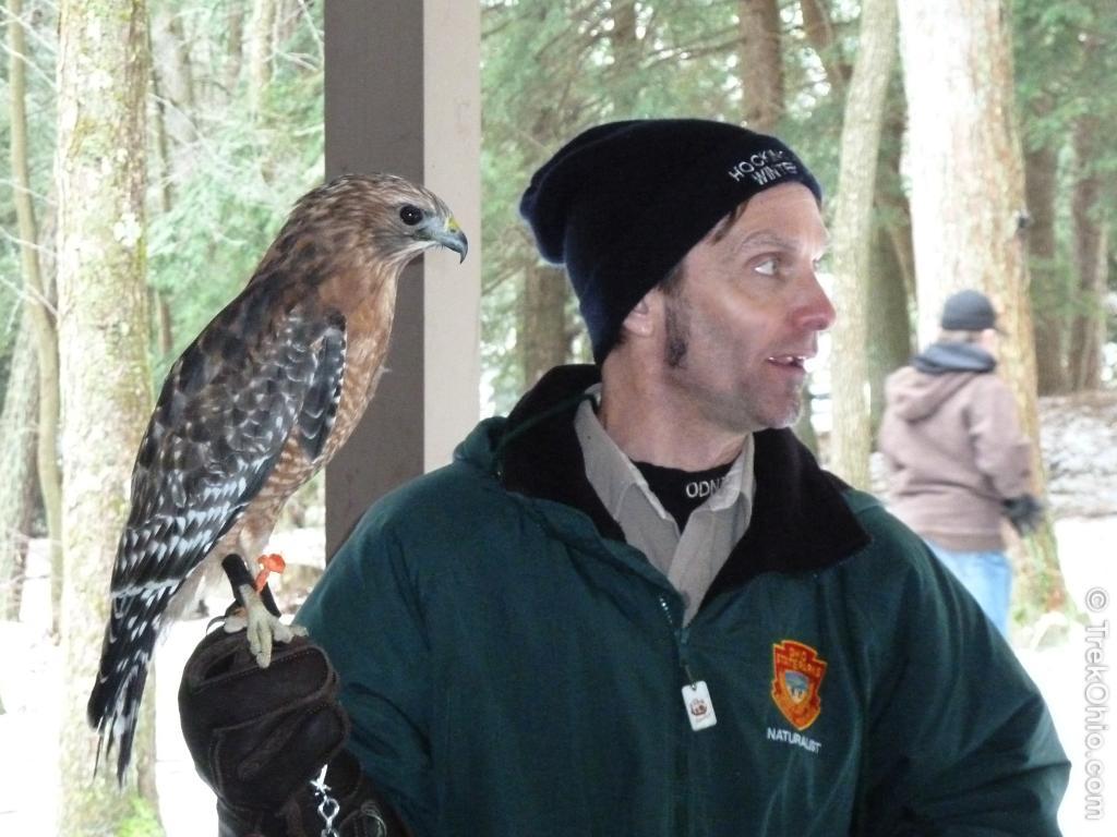 Pat Quackenbush and a hawk