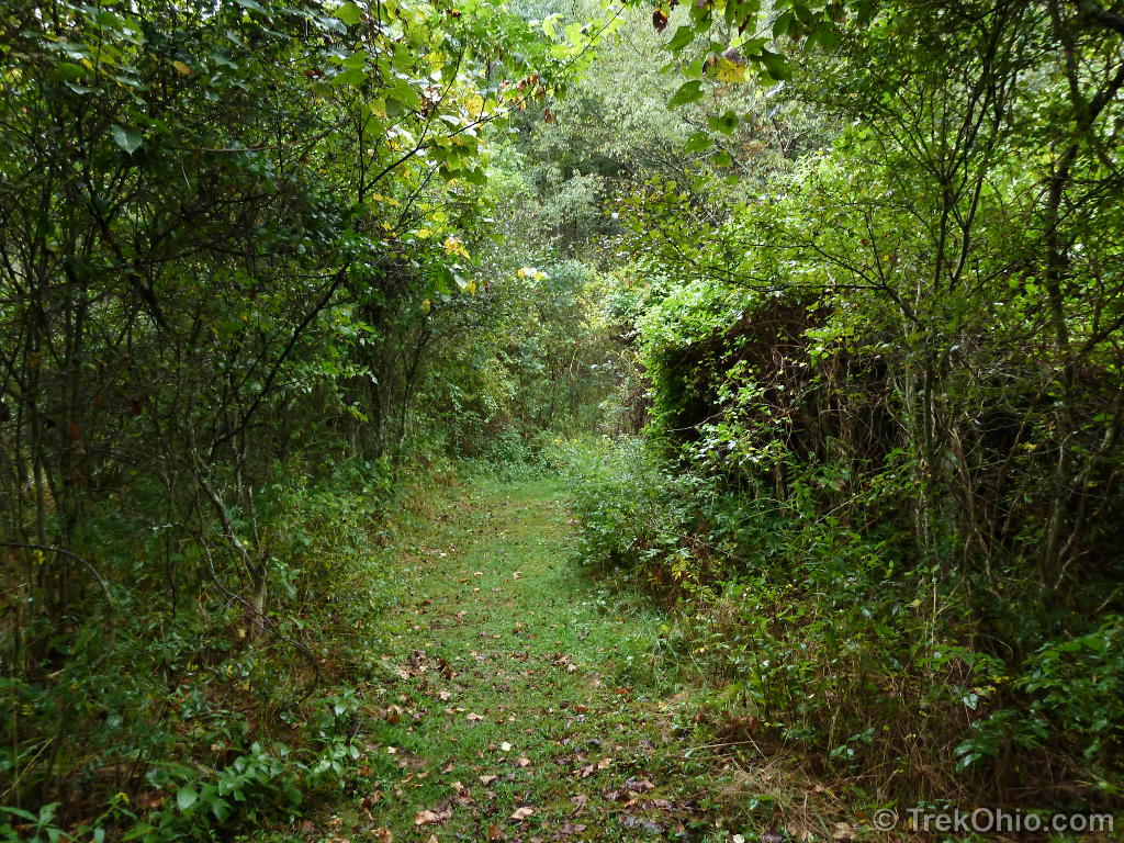 nature preservation The ridges sanctuary | preservation, education, and research  cook-albert  fuller nature center open daily: 9 - 5 8166 hwy 57 baileys harbor, wi 54202.