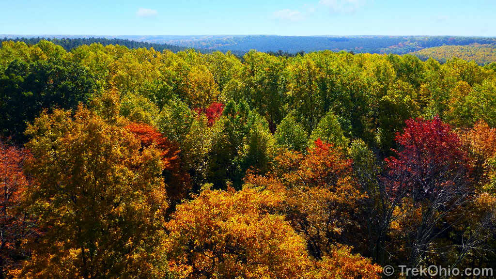 View from Mohican fire-tower