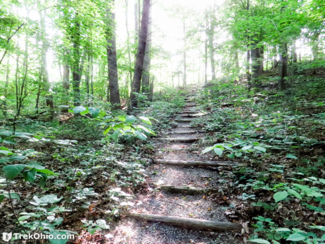 Stairs leading uphill on The Wilderness Trail