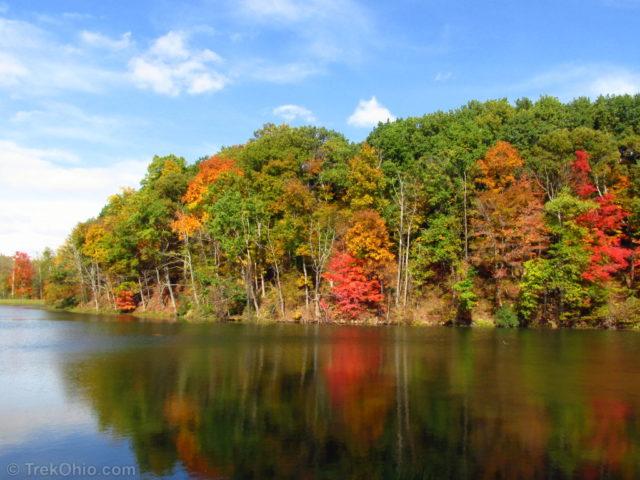 Autumn shoreline at Mt. Gilead State Park