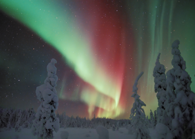Northern Lights in Snowy Forest in Finland (WikiMedia - Creative Commons License)
